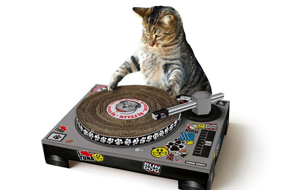 cat-scratch-turntable