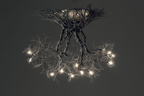 tree-roots-light